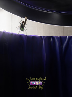 mosquito on wall - creative-photography-13