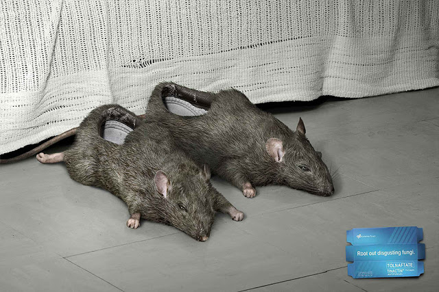 rat shoes - creative-photography-14