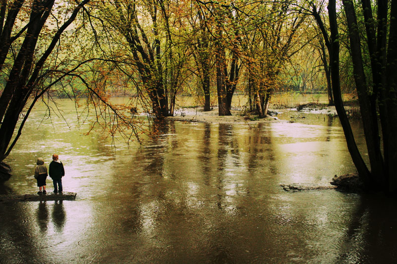 high_river_by_FigoTheCat