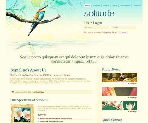 Solitude PSD Template