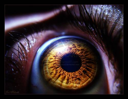 Eye -.by ~BaselMahmoud