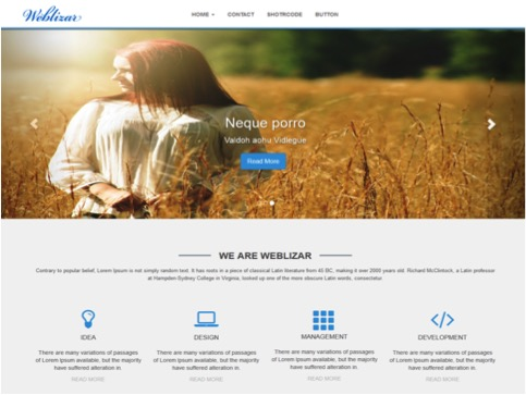 Weblizar customizable-wordpress-themes2