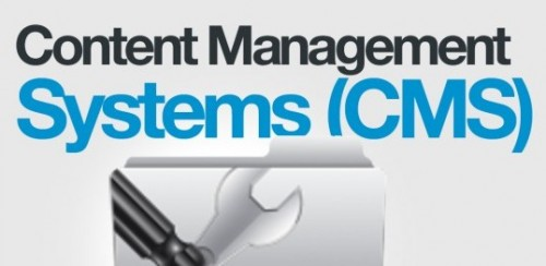 Content Management Systems (CMS)